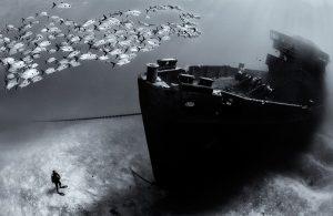 آموزش ترفندهای عکاسی زیر آب